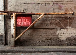 Read more about the article The Rising Need for Self-Preservation in our Communities